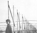 [Jocelyn Bell Burnell and Cambridge antenna used in pulsar discovery]
